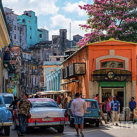 Colorful Havana In Bloom by Les Palenik