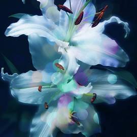 Johanna Hurmerinta - Colorful Lily Art Work