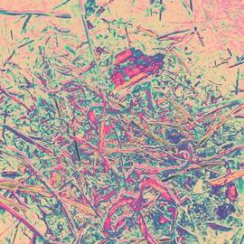 Nikolina Rosic - Colorful Mess