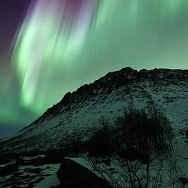 David Broome - Colorful Nordic Mountain Crown