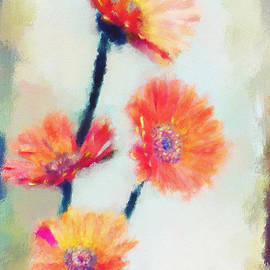 Colorful Orange Zinnias by Lois Bryan