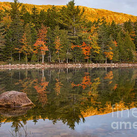 Colorful Reflections by Bob Phillips