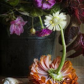Colorful Zinnias by Elena Nosyreva