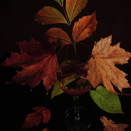 Colors In The Glass by Randi Grace Nilsberg