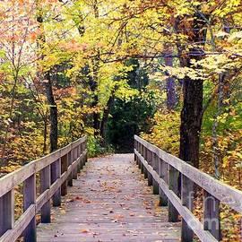 Charlene Cox - Colors of Autumn