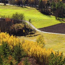Paul MAURICE - Colors of fall - 1
