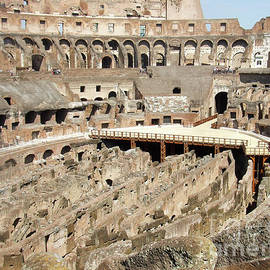 Colosseum Rome Italy - Edward Fielding