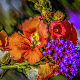 Colourful Pb #h8 by Leif Sohlman