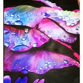 Sahar Abid - Colours Of Life