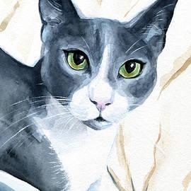 Dora Hathazi Mendes - Come Home - Blue Tuxedo Cat Portrait
