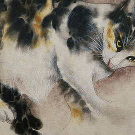 Comfortable by Chien-yu Chen