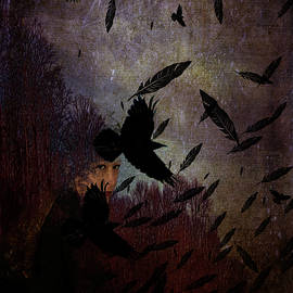 Conflict of The Crows by Lesa Fine