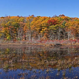Juergen Roth - Connecticut Fall Foliage