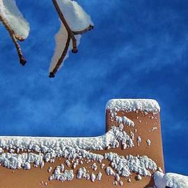Diana Dearen - Contrast After the Snow