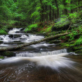 Cool Spring Stream by Bill Wakeley