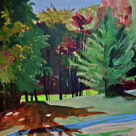 Copper Shadow by Bonnie See