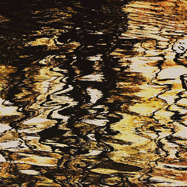 Richard Andrews - Copper Tones