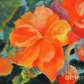 Kathy Braud - Coral Begonias