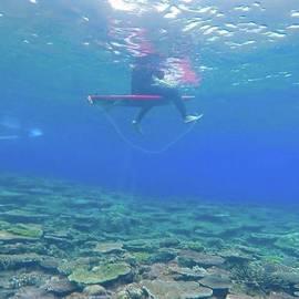 Yuto Midori - Coral Reef