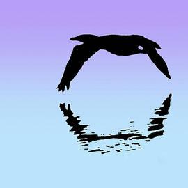 Cormorant Reflection by Lori Lafargue