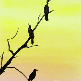 Cormorants by Laurel Best