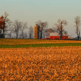 Tina M Wenger - Corn All Harvested