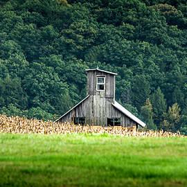 Corn Field Silo by Marvin Spates