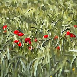 Tracey Harrington-Simpson - Cornfield Poppy Landscape