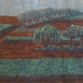 Joann Renner - Cornfields
