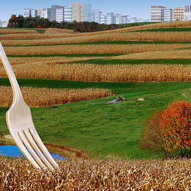 Cornfields With City by Dolores Kaufman