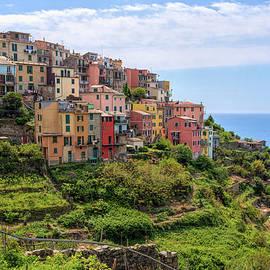 Joan Carroll - Corniglia Cinque Terre Italy