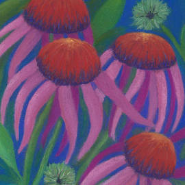 Cosmic Coneflowers by Anne Katzeff