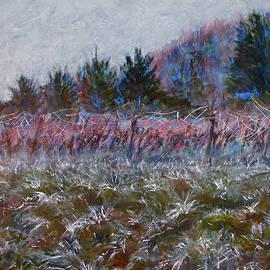 SB Boursot - Cotes de Beaune Vineyard - Winter