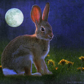 R christopher Vest - Cottontail By Moonlight