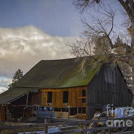 Mitch Shindelbower - Cottonwood Barn