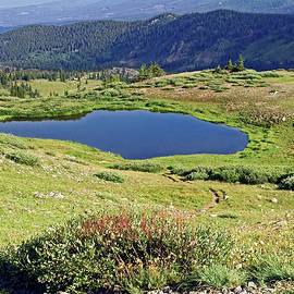 Cottonwood Pass Pond by Sally Weigand