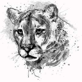 Cougar Head Black and White by Marian Voicu
