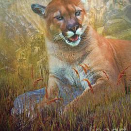 Jan Galland - Cougar Rock