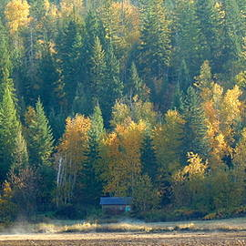 Ed Mosier - Country Cabin Panorama