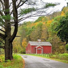 Country Road by Carol McGrath