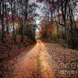 Peggy Franz - Country Road Fall Colors