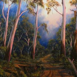 John Cocoris - Country Road Sunset