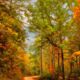 Country Road Variation 1 by Lorraine Baum