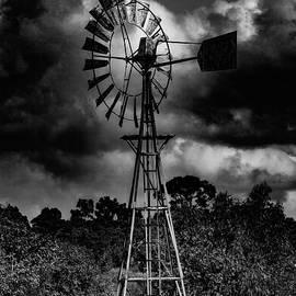 Naomi Burgess - Country Windmill