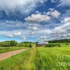 Veikko Suikkanen - Countryside II