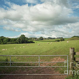 Countryside in Wales by Patricia Hofmeester