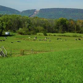 Cow Farm on the AT 2 by Raymond Salani III