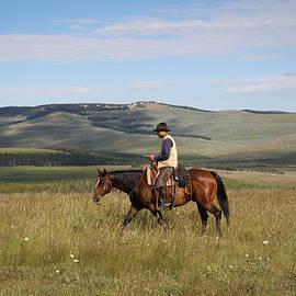 Cowboy Landscapes by Diane Bohna