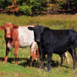 Jill Lang - Cows Artwork
