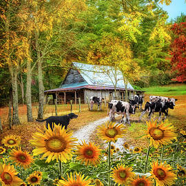 Cows on the Country Paths  by Debra and Dave Vanderlaan